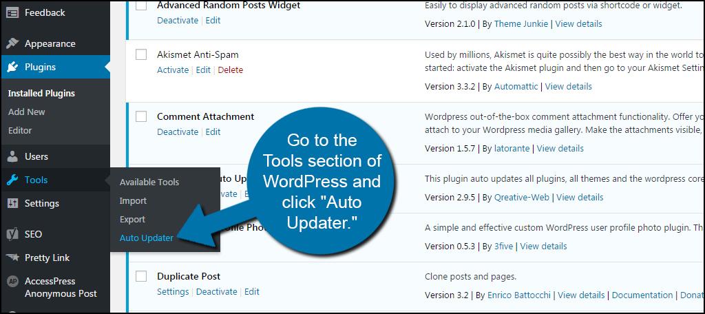Update Plugin in WordPress.